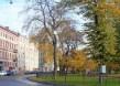 Площадь Тургенева в Санкт-Петербурге