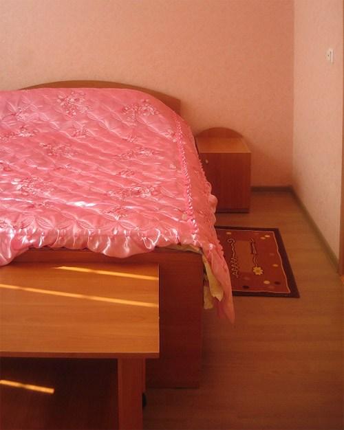 Одноместный номер в гостинице Санкт-Петербург, Санкт-Петербург