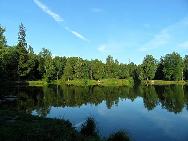 Фотография достопримечательности. Суздальские озера в Санкт-Петербурге