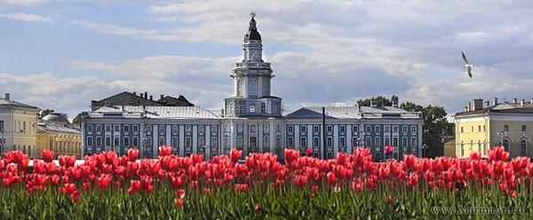 Фотография достопримечательности. Кунсткамера в Санкт-Петербурге