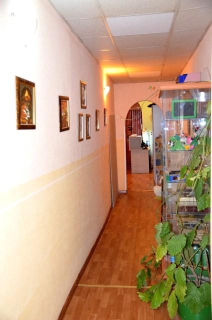Фотография хостела. Кот Матроскинн  на Чернышевской в Санкт-Петербурге
