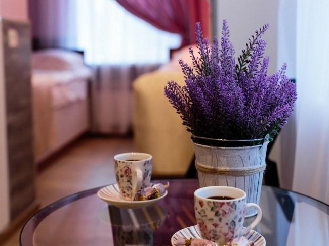 Фотография хостела. Гостиница Усадьба на Елизарова в Санкт-Петербурге